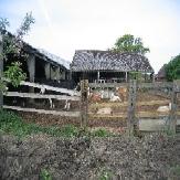 Mire Farm-1-1