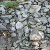 A Stone Woman